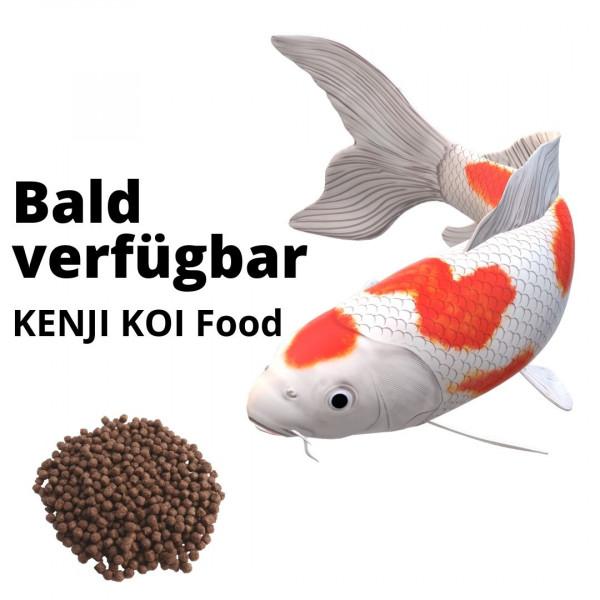 KENJI KOI Baby Koi Food 1 - 250g