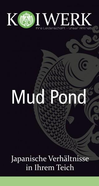 Koiwerk Mud Pond